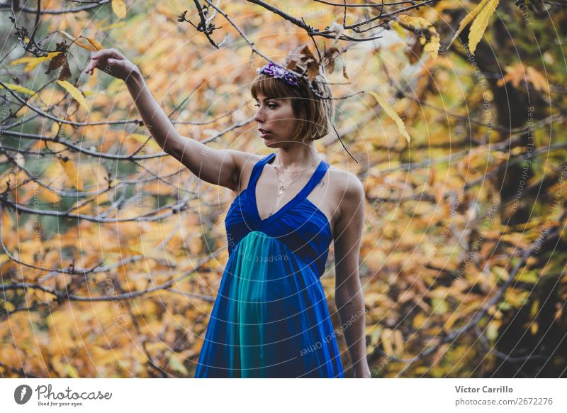 A Young Woman Standing in the Woods Lifestyle Elegant Human being Feminine Young man Youth (Young adults) Adults 1 13 - 18 years Environment Nature Plant