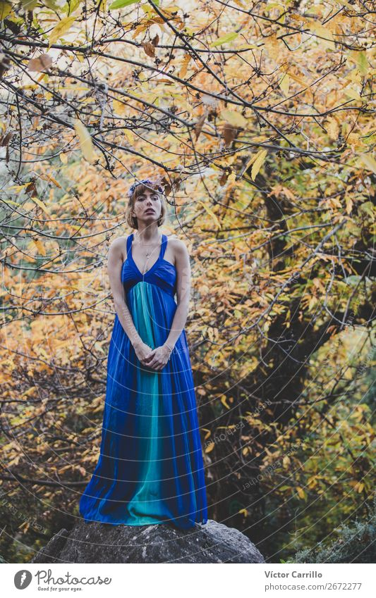 A Young Woman Standing in the Woods Lifestyle Elegant Design Exotic Joy Human being Feminine Young woman Youth (Young adults) Adults 1 18 - 30 years Culture