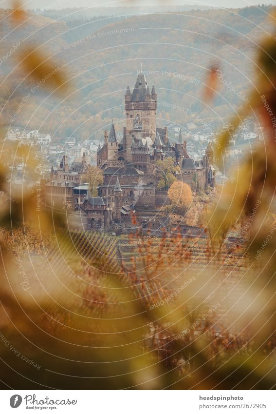 Reichsburg in Cochem in autumn Nature Autumn Tree Leaf Forest Germany Castle Tourist Attraction Landmark Monument Famousness Historic Brown Gold