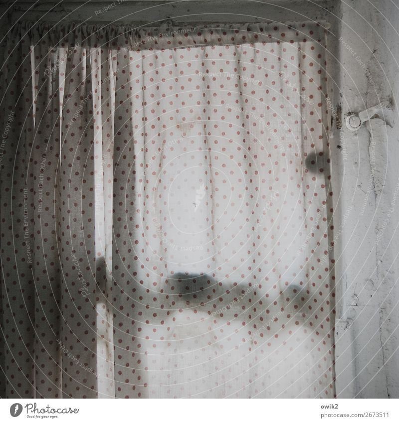 Scraped punctually Window Bathroom window Drape Closure Cloth Polka dot Point Curtain Screening Discretion Wrinkles Folds Hang Old Patient Calm Transience