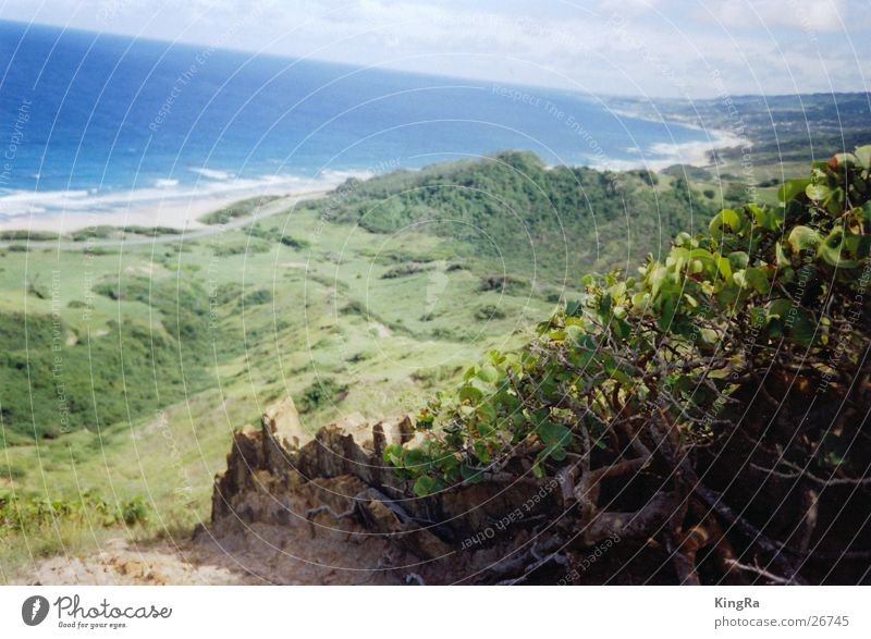Ocean Green Blue Plant Stone Rock Vantage point Valley South America Barbados