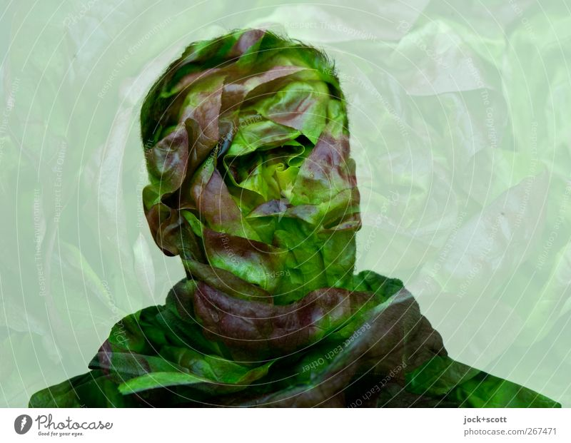head of lettuce Lettuce Nutrition Head Art Think Exceptional Fresh Healthy Delicious naturally Green Double exposure Surrealism Comic Illusion Fantasy
