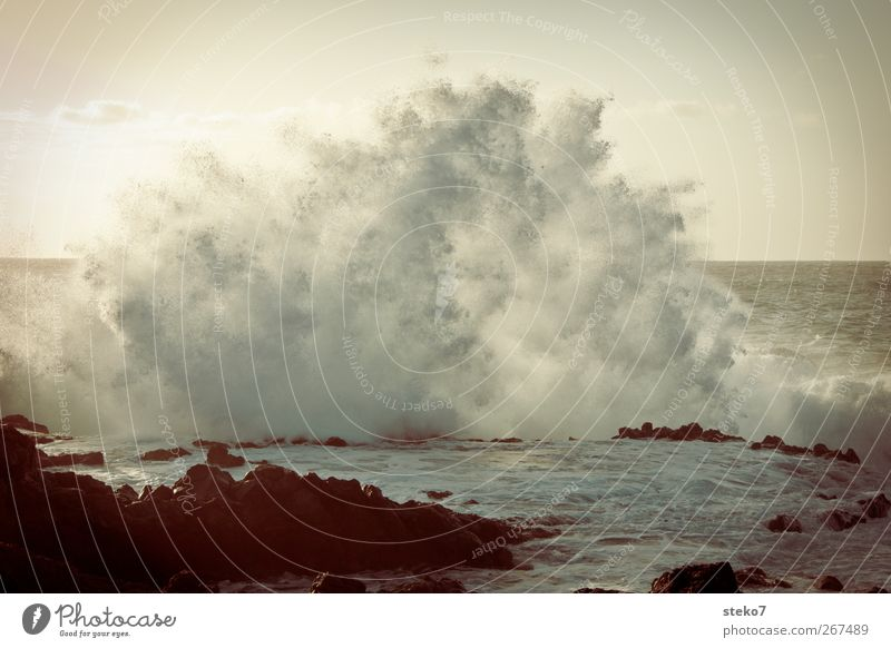 Water Ocean Coast Waves Wild Wet Drops of water Retro Surf Cloudless sky White crest Atlantic Ocean Romp Tenerife