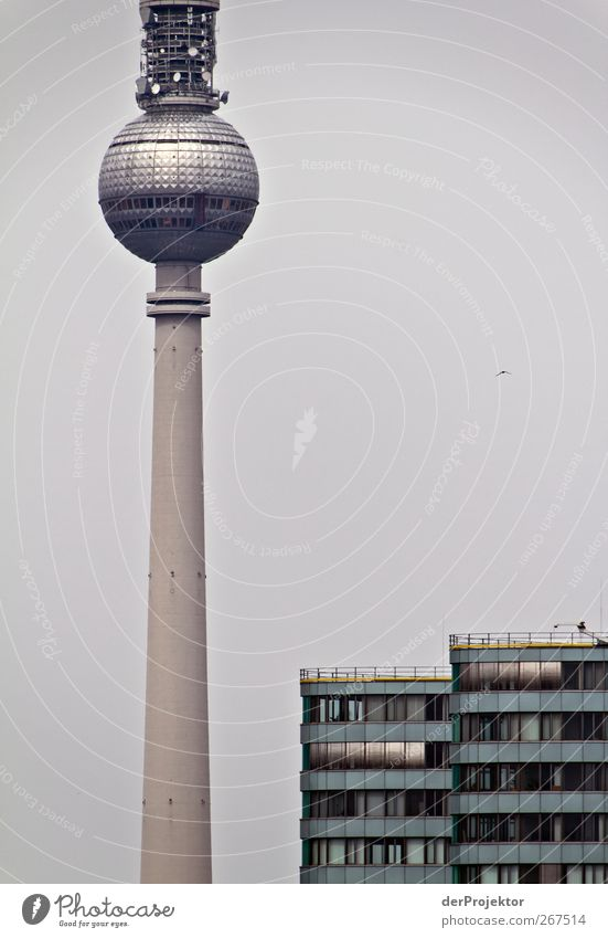 Why are you so into Berlin pictures with Alex? Technology Telecommunications Capital city Skyline High-rise Tower Facade Tourist Attraction Landmark Dark Thin