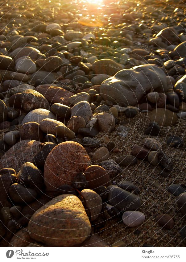 Beach Stone Sand Baltic Sea Pebble