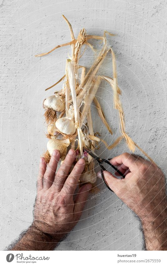 Bouquet of fresh purple garlic Food Vegetable Herbs and spices Human being Man Adults Head 1 45 - 60 years Art Fresh Natural Above White Garlic background