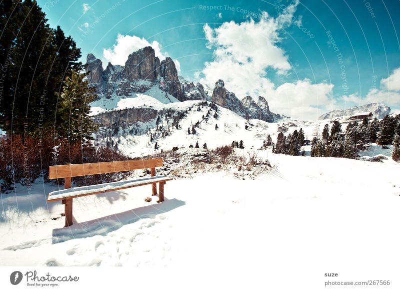 Sky Nature Blue Vacation & Travel Tree Plant Clouds Environment Landscape Snow Mountain Spring Rock Climate Exceptional Elements