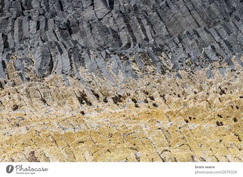 Basaltic columns Vacation & Travel Island Environment Nature Landscape Elements Earth Rock Stone Natural Yellow Gray Willpower Might Design Great Britain