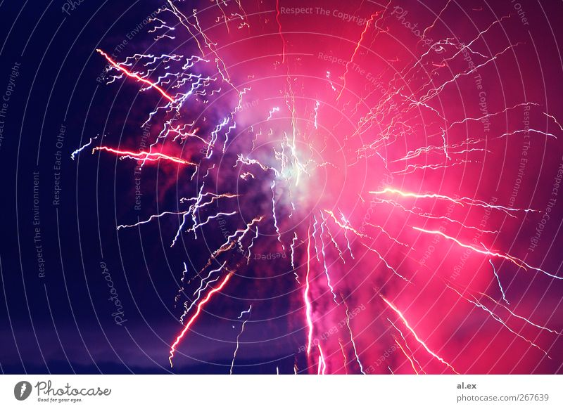 Red Bright Background picture Pink Wild Illuminate Esthetic Violet New Year's Eve Firecracker Visual spectacle Spark Explosion Play of colours Light Tracer path