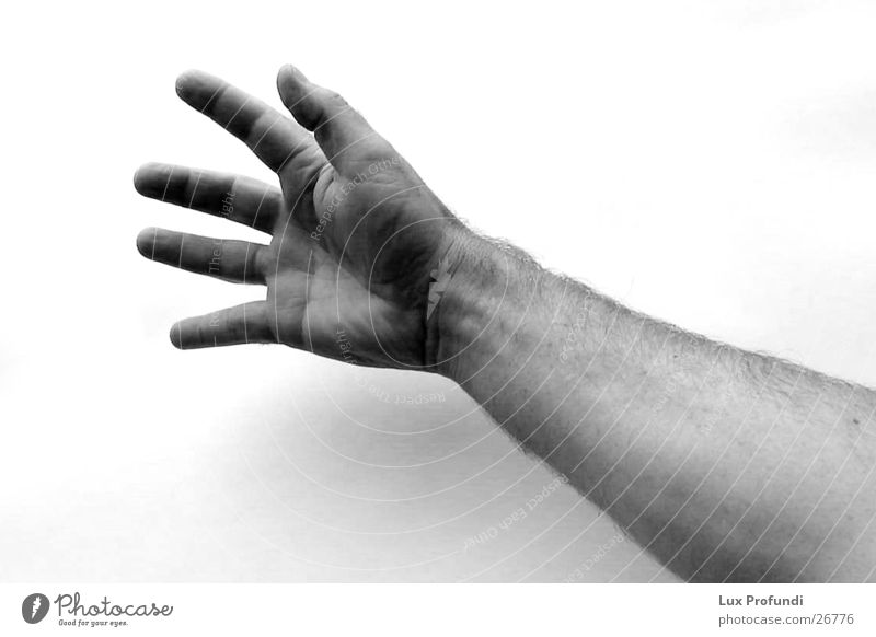 catch me if u can Man Hand Close-up Catch Arm Black & white photo Human being Detail