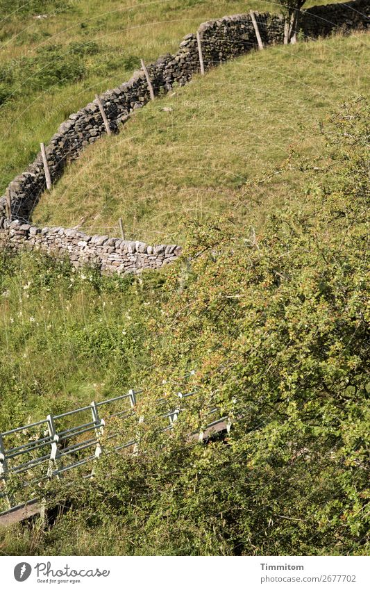 The way is the goal? Environment Nature Landscape Grass Bushes Meadow Hill Great Britain Lanes & trails Bridge Simple Green Intersection Wall (barrier) Pasture
