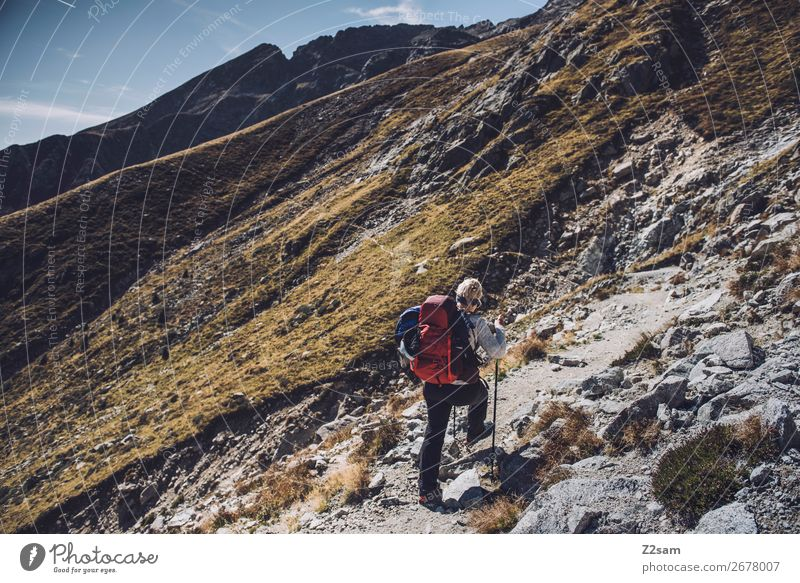 Young woman climbing | E5 crossing the Alps Vacation & Travel Adventure Expedition Mountain Hiking Climbing Mountaineering Youth (Young adults) Nature Landscape