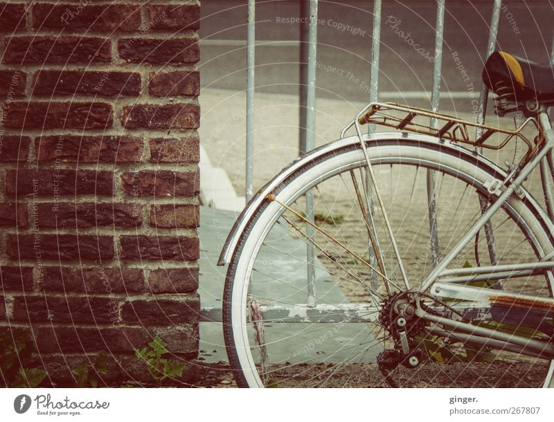 Old fur Cycling Rust Brick Grating Tilt Warped Parking Wall (barrier) luggage carrier Guard Spokes Auburn Metalware Colour photo Subdued colour Exterior shot