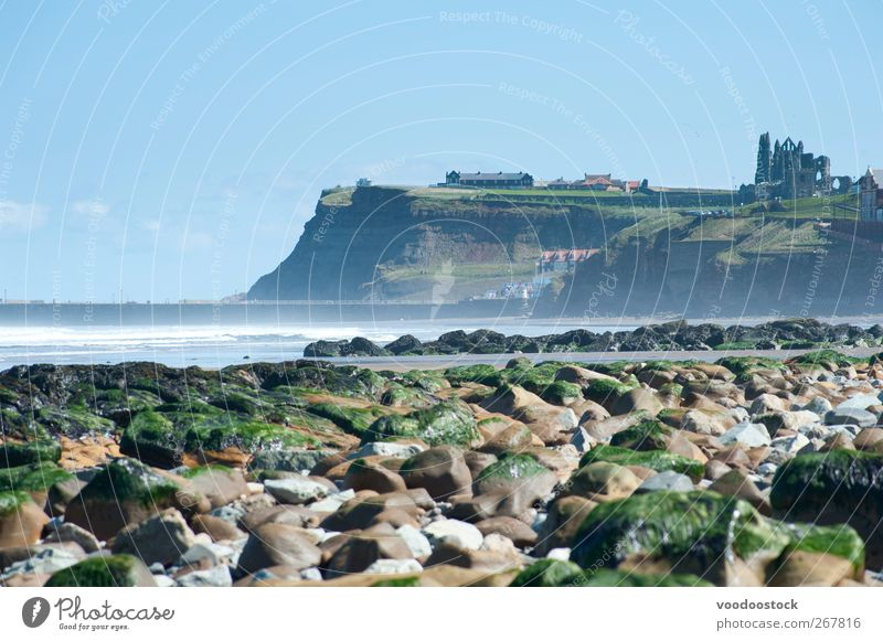 Whitby Coast Line Beach Air Water Sky North Sea Tourist Attraction Landmark whitby abbey Vacation & Travel Fresh north yorkshire England Great Britain Seaweed