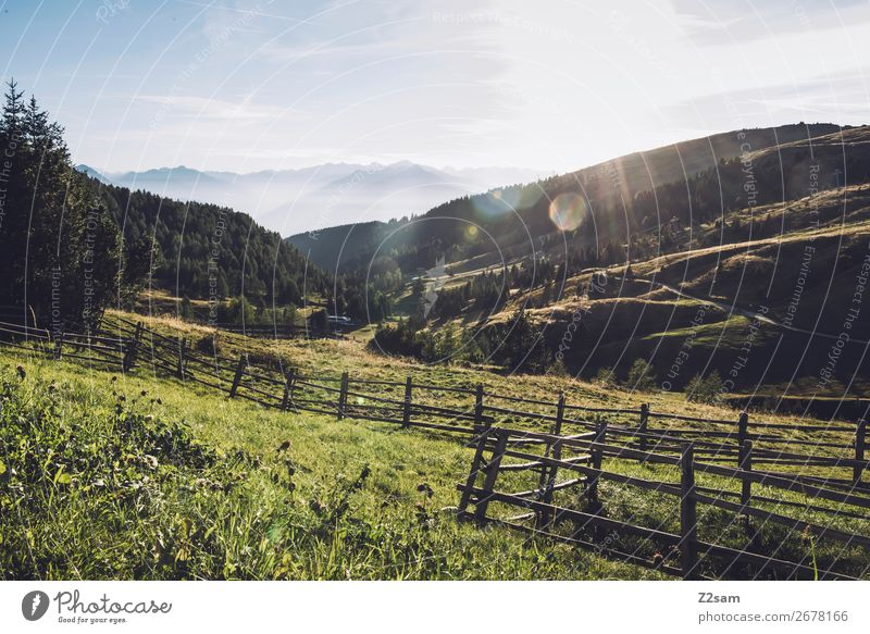 Mountain panorama in South Tyrol Hiking Environment Nature Landscape Sky Sun Summer Beautiful weather Alps Peak Esthetic Fresh Gigantic Sustainability Natural
