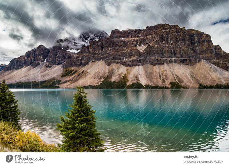 Crowfoot Mountain sorum Vacation & Travel Nature Landscape Elements Clouds Autumn Bad weather Bushes Fir tree Coniferous trees Rock Lakeside bow lake Turquoise