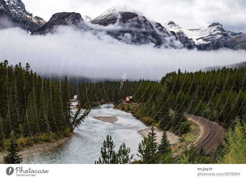 Vacation & Travel Nature Landscape Forest Mountain Environment Tourism Trip Fog Railroad River Railroad tracks Curve Canada Engines North America