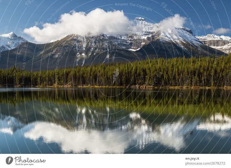 Smooth as a mirror Vacation & Travel Trip Mountain Nature Landscape Clouds Summer Autumn Weather Forest Rocky Mountains Snowcapped peak Lakeside Herbert lake