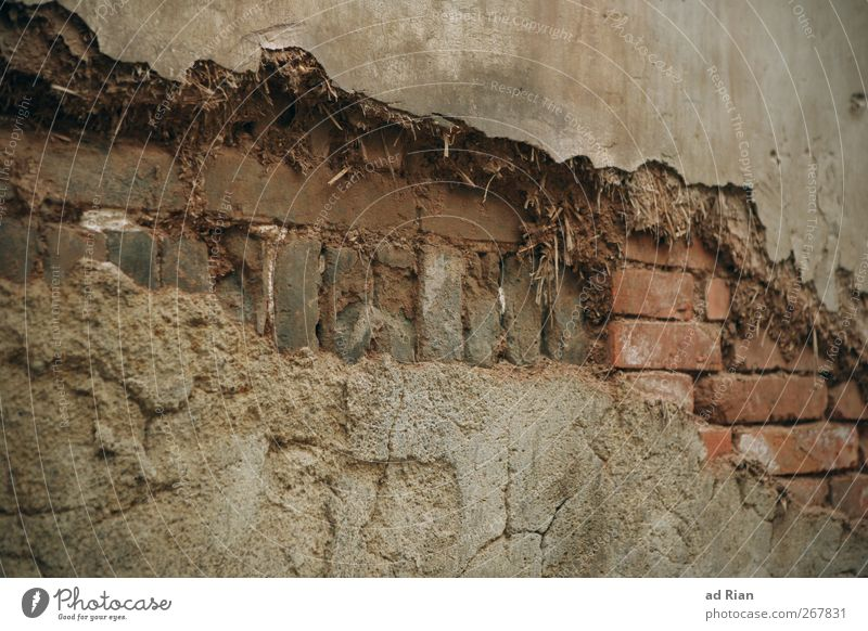 Old House (Residential Structure) Wall (building) Wall (barrier) Derelict Ruin Old town Brick wall Brick facade