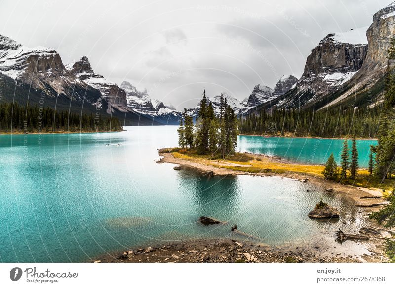 little wood Vacation & Travel Trip Far-off places Freedom Nature Landscape Sky Autumn Forest Rock Mountain Lakeside Island Spirit Island Lake Maligne Turquoise