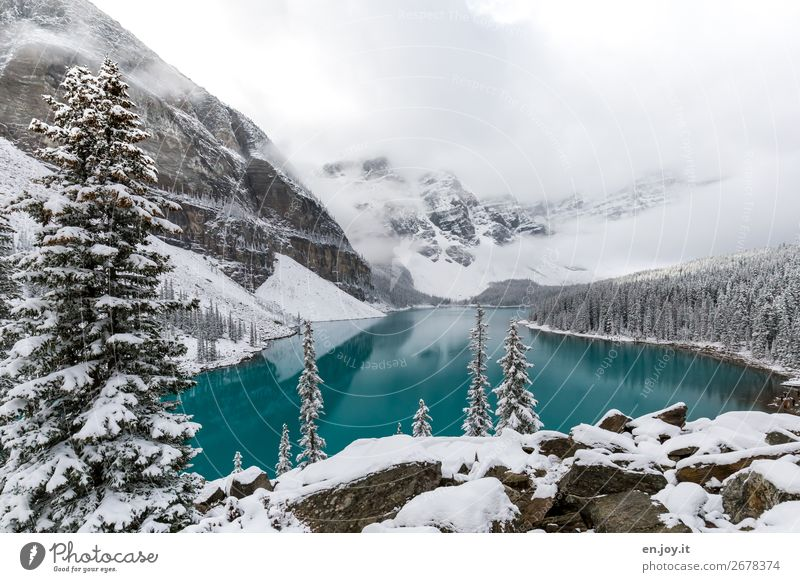 Curtain Up Vacation & Travel Trip Far-off places Expedition Winter Snow Winter vacation Mountain Nature Landscape Clouds Ice Frost Coniferous trees Fir tree