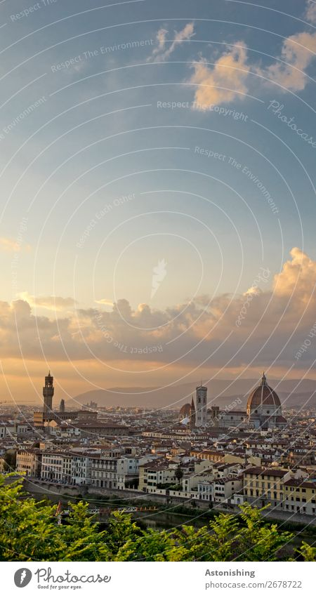 Florence Environment Nature Sky Clouds Sunrise Sunset Summer Wind Plant Leaf River Italy Town Downtown Old town House (Residential Structure) Church Dome Tower