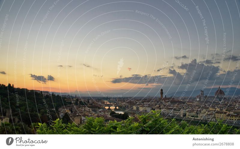 Florence after sunset Nature Landscape Sky Clouds Horizon Sun Sunrise Sunset Sunlight Weather Beautiful weather Plant Tree Leaf River Arno Italy Town Downtown
