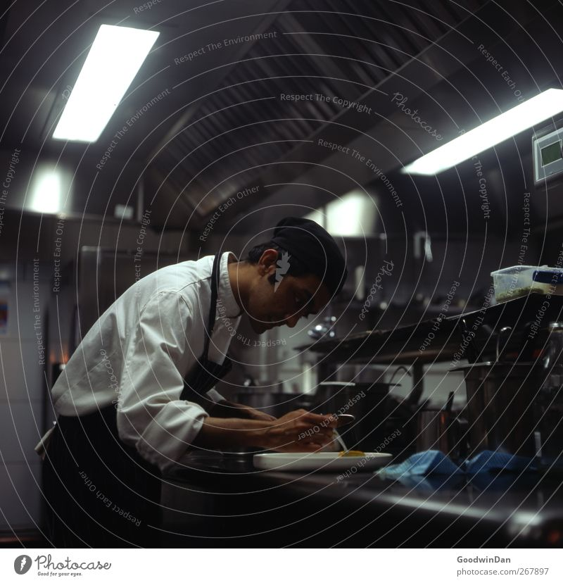 Human being Youth (Young adults) Young man Work and employment Masculine Authentic Kitchen Profession Workplace Determination Cook Responsibility Reliability