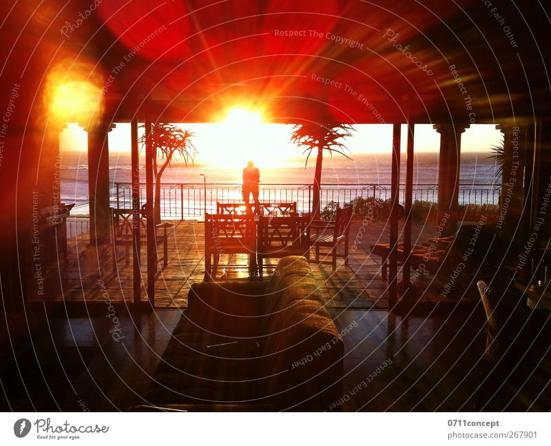 Chillout Holiday Relaxation Vacation & Travel Leisure and hobbies Sun Wellness Oasis Lounge To enjoy Hotel Ocean Beach