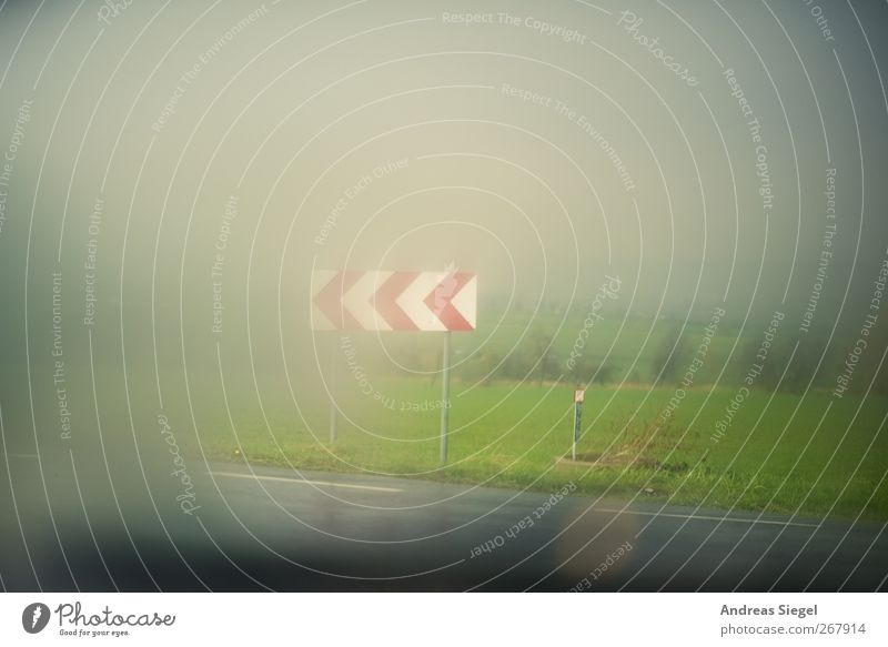 Don't know where you go Environment Nature Landscape Spring Bad weather Storm Fog Rain Meadow Field Transport Traffic infrastructure Street Crossroads