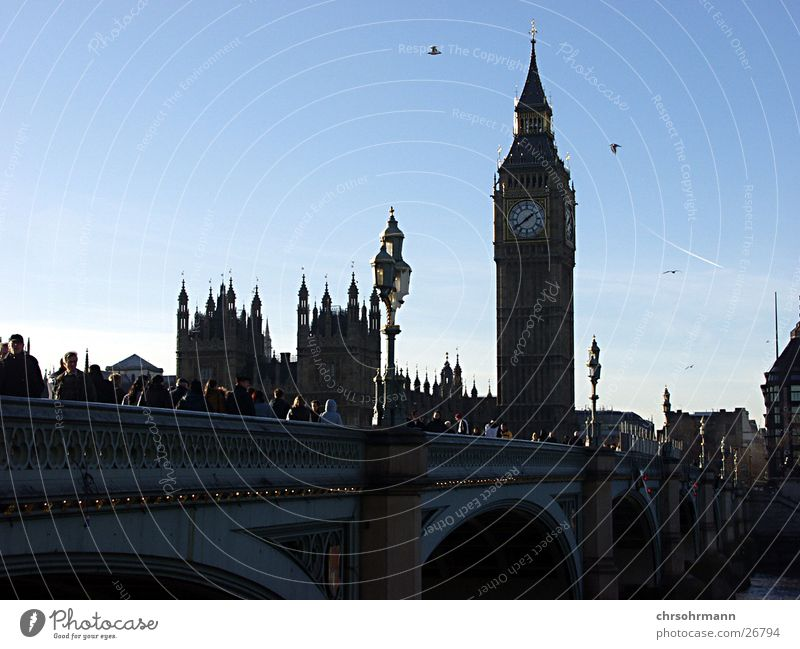 Big Ben II London Themse Bird Bridge Tower Houses of Parliament parliament