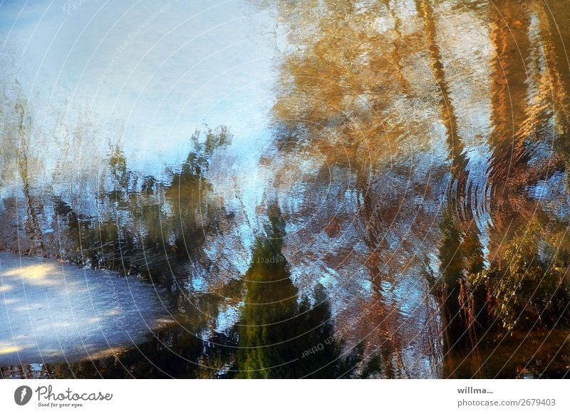 seasons Water Spring Autumn Winter Climate Pond Lake Cold Reflection Thaw Ice Autumnal Colour photo Exterior shot