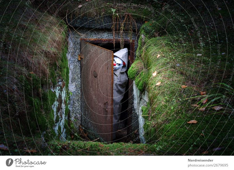 Human being Forest Dark Fear Door Earth Crazy Observe Threat Fear of death Manmade structures Creepy End Hunting Moss Whimsical