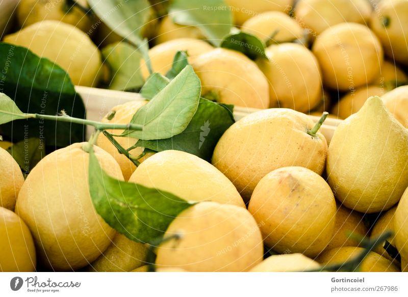 Yellow Food photograph Fruit Fresh Nutrition Delicious Markets Vegetarian diet Lemon Sour Lemonade Lemon yellow Lemon peel