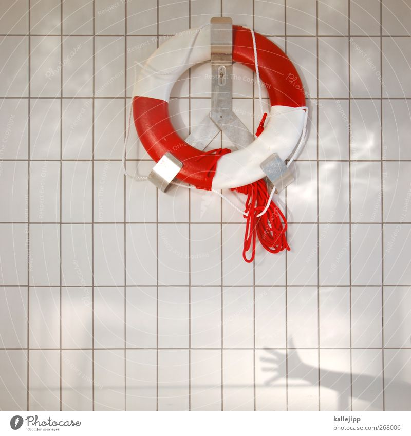 Help Safety Swimming pool Tile Rescue Water wings Object photography Life belt Ready Indoor swimming pool Rescue equipment Bright background