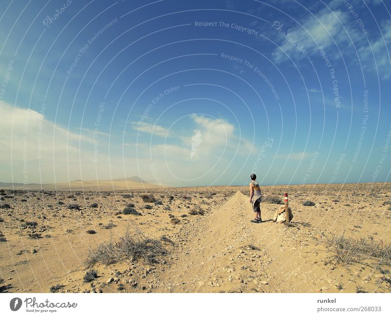 Human being Sky Nature Blue Vacation & Travel Sun Summer Clouds Loneliness Far-off places Landscape Yellow Freedom Sand Earth Hiking