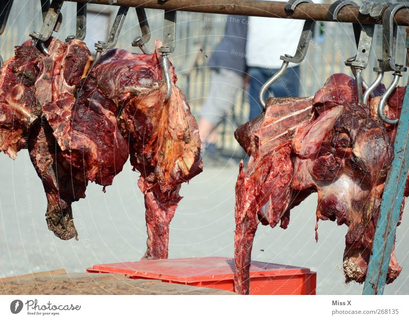 Food Fly Hang Blood Meat Checkmark Feed Spoiled Butcher Beef Meat scare