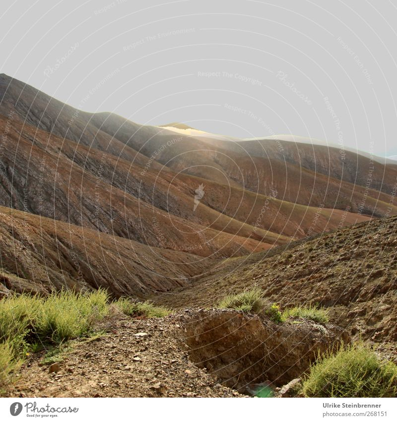 Sky Nature Plant Landscape Mountain Spring Grass Gray Sand Lamp Moody Horizon Lighting Brown Earth Rock