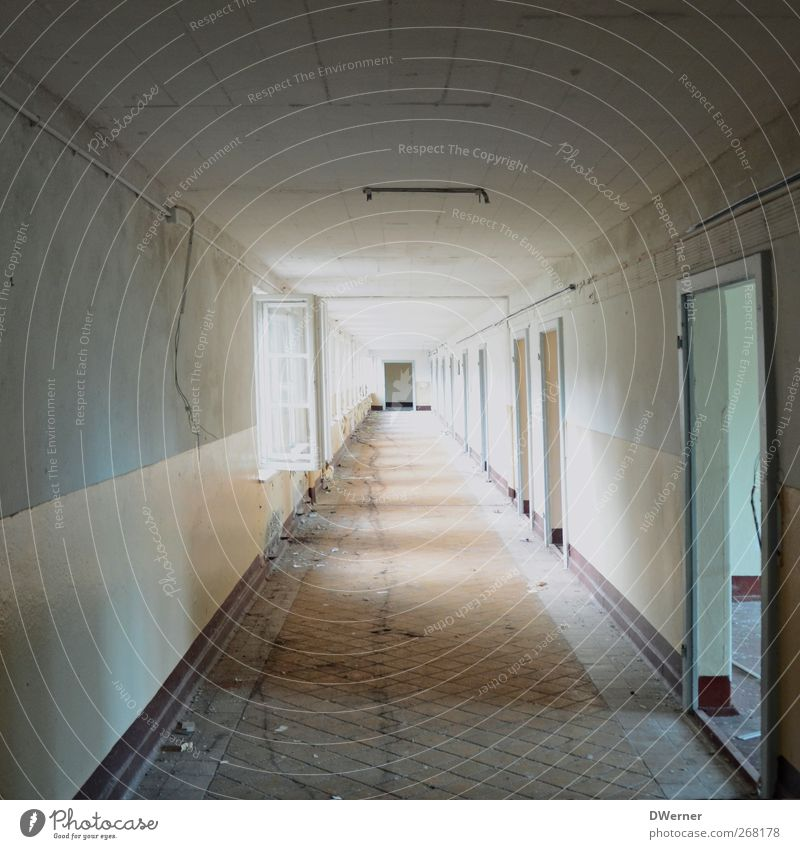 tunnel vision Living or residing Flat (apartment) Redecorate Moving (to change residence) Construction site Factory Industrial plant Ruin Manmade structures