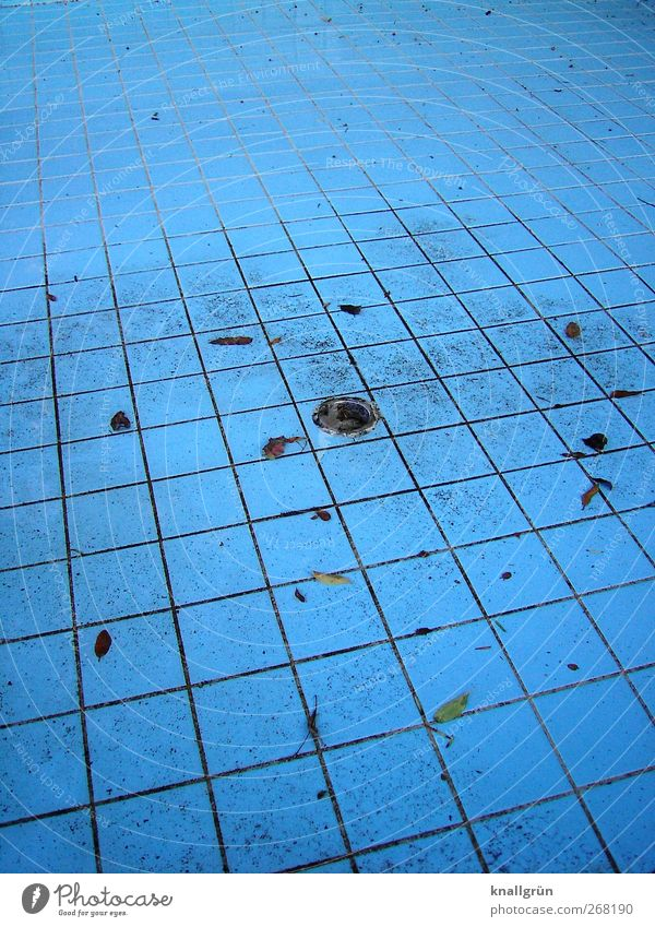 Swimming pool season! Swimming & Bathing Sporting Complex Dirty Sharp-edged Blue Tile Drainage Open-air swimming pool Colour photo Exterior shot Deserted