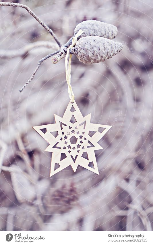 Christmas decorative wooden snowflake on branch Style Design Handcrafts Winter Decoration Feasts & Celebrations Christmas & Advent New Year's Eve Tree Wood Hang