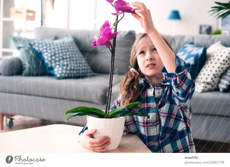 happy kid girl with orchid flower in pot. Pot Lifestyle Exotic Beautiful Child Gardening Plant Flower Orchid Leaf Growth Small Pink Pure caring Houseplant Home