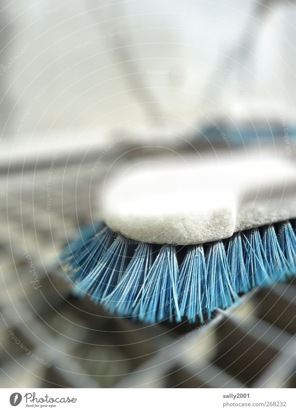 Blue cleaning Personal hygiene Brush Metal grid Cleaning Dirty Hard Cleanliness bristly Bristles cleaning day Colour photo Exterior shot Close-up Detail