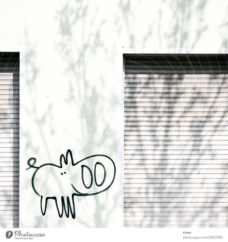 Town Tree Animal Life Graffiti Wall (building) Funny Happy Wall (barrier) Design Contentment Decoration Bright Modern Happiness Creativity