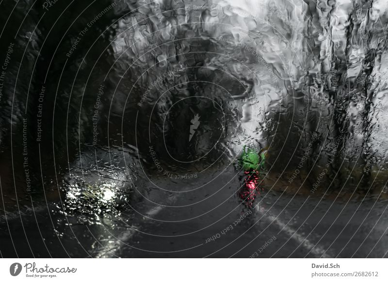 Cyclist drives in front of a car when it rains Bicycle Human being 1 Bad weather Rain Transport Means of transport Traffic infrastructure Road traffic Motoring