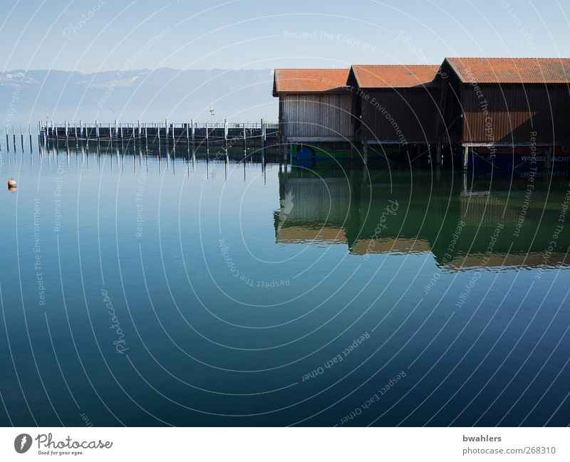 At the lake Nature Water Spring Beautiful weather Lakeside Deserted Harbour Blue Boathouse Reflection Calm Far-off places Lake Constance Colour photo
