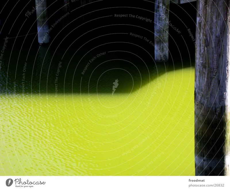 Water Green Calm Wood Derelict Baltic Sea Geometry Graphic