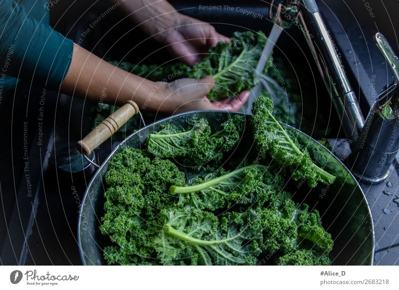 Wash fresh green cabbage leaves at tap Food Vegetable Lettuce Salad Cabbage Nutrition Organic produce Vegetarian diet Diet Fasting Bowl Lifestyle Healthy