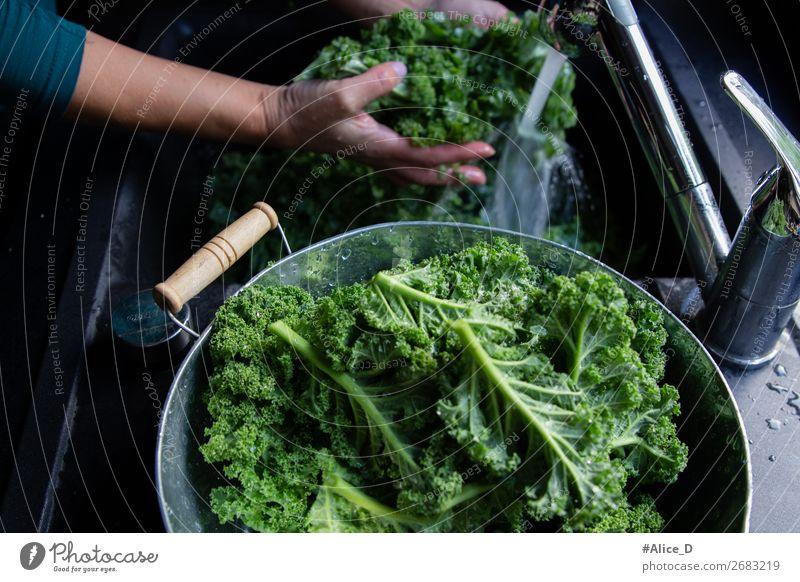 kale washing winter superfood Food Vegetable Lettuce Salad Cabbage Kale Kale leaf Nutrition Organic produce Vegetarian diet Diet Fasting Lifestyle