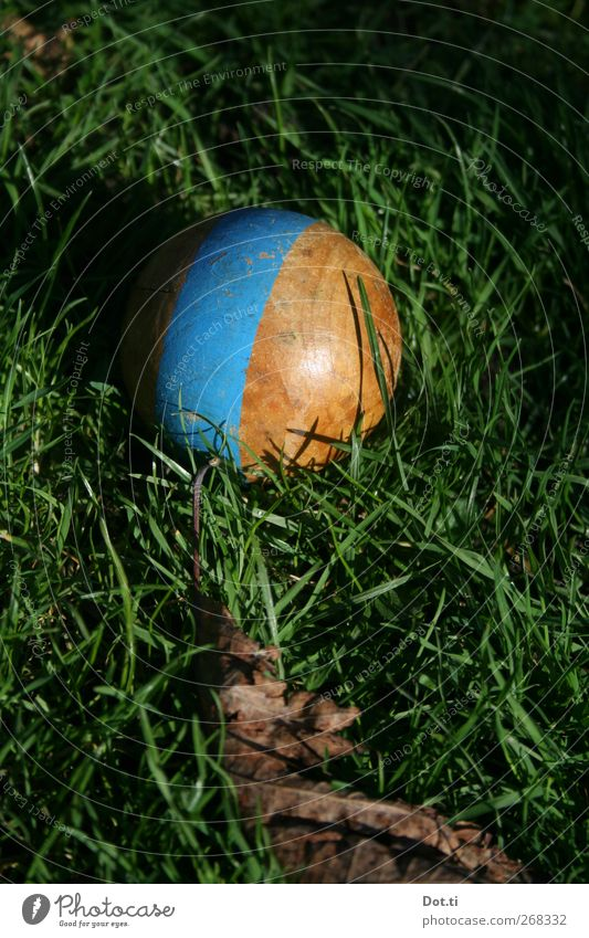 Nature Blue Grass Leisure and hobbies Stripe Round Retro Sphere Painted Old fashioned Object photography Grass green Spherical Croquet